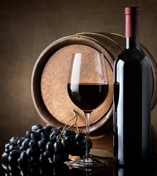 netsuite-tekiio-vinos